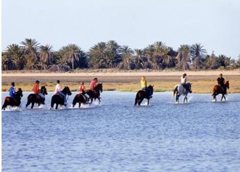 Equitation dans la mer à Djerba